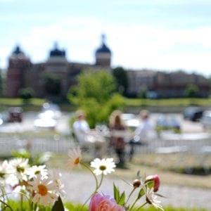 Konferenspaket Guld på Gripsholms Värdshus