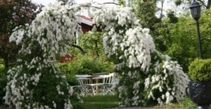 Midsommar på Dufweholms Herrgård